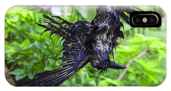 Death Raven Hanging In The Rope Phone Case by Gina Koch