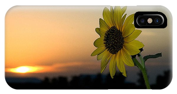 IPhone Case featuring the photograph Sunflower And Sunset by Mae Wertz