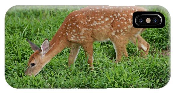 Deer 46 IPhone Case
