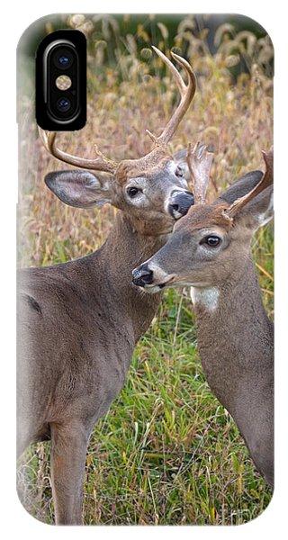 Deer 49 IPhone Case