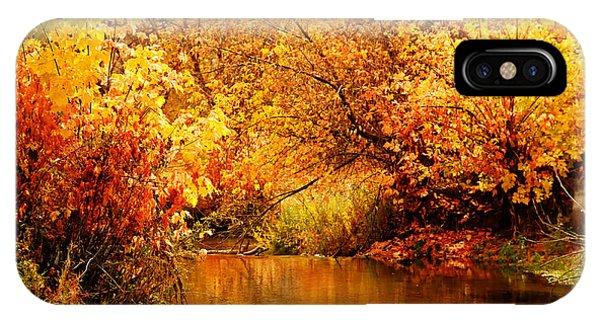Deer Creek Autumn IPhone Case