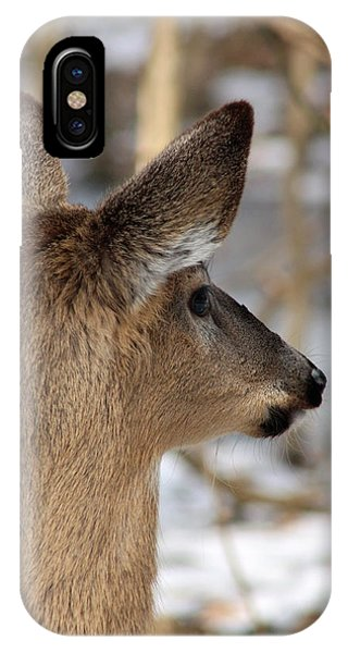 Deer Day Dreamer IPhone Case