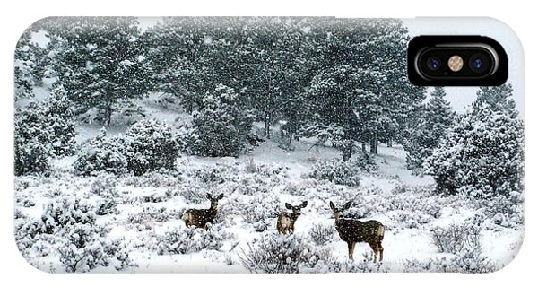 Deer In A Snow Storm IPhone Case