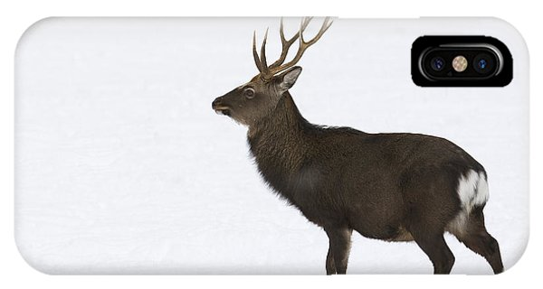 Deer In Snow IPhone Case
