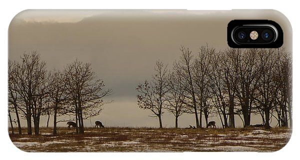 Brian Rock iPhone Case - Deer In The Meadows by Brian Rock