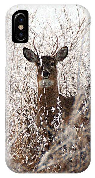 Deer In Winter IPhone Case