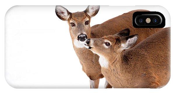 Deer Kisses IPhone Case