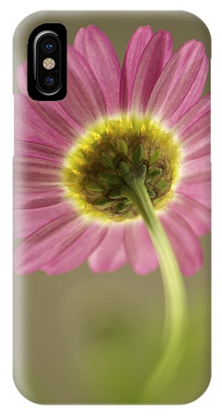 Delicate Daisy IPhone Case
