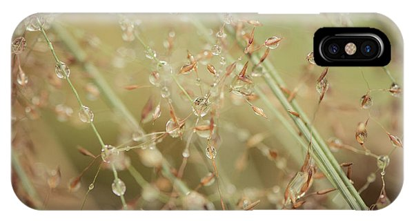 Delicate Dew Drops IPhone Case