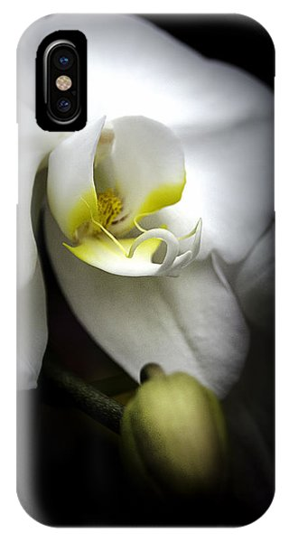 Delicate Exotic Orchid IPhone Case