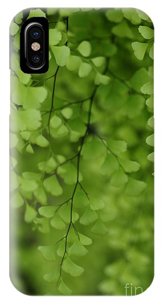 IPhone Case featuring the photograph Delicate by Linda Shafer