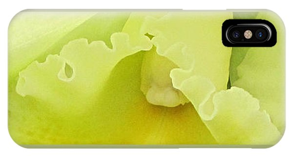 Delicate Shades IPhone Case