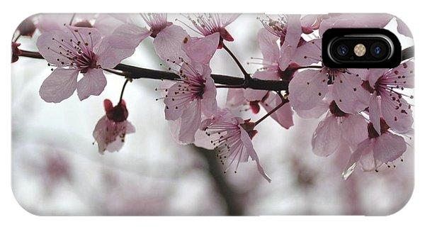 Delicate Spring IPhone Case