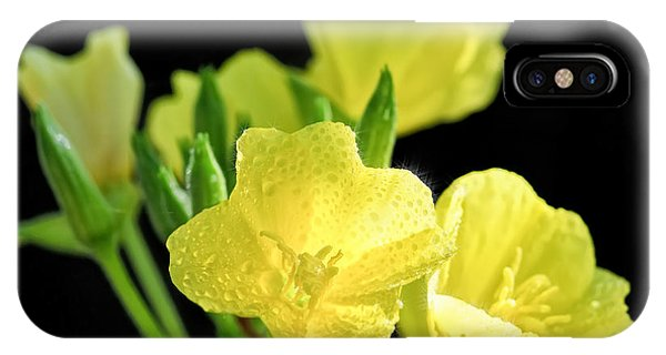 Delicate Yellow Wildflowers In The Sun IPhone Case