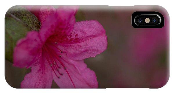 Delightful Azalea IPhone Case