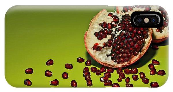 Seeds iPhone Case - Departed by Evelina Kremsdorf