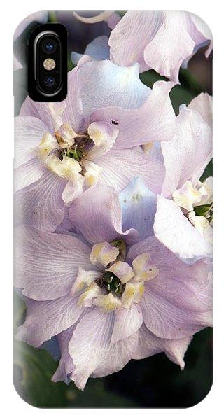 Cultivar iPhone Case - Dephinium 'dolly Bird' by Adrian Thomas