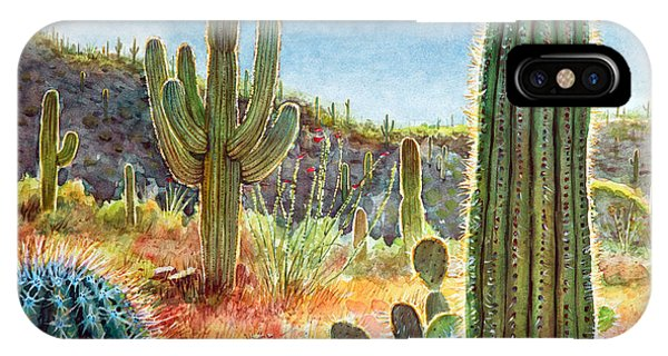 Desert iPhone Case - Desert Beauty by Frank Robert Dixon