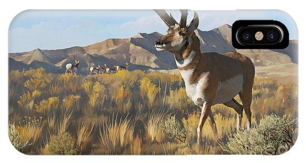 Desert Buck IPhone Case