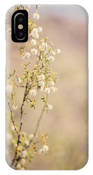Desert Delicates IPhone Case