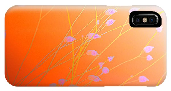 iPhone Case - Desert Flowers by Holly Kempe
