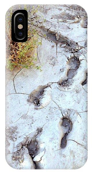 Desert Footprints IPhone Case