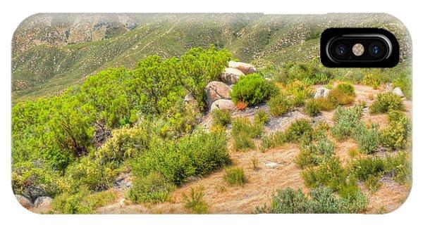 Desert Greenery Phone Case by Deborah Smolinske