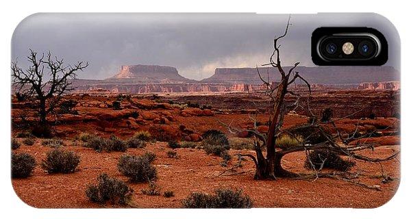 Desert Light  IPhone Case