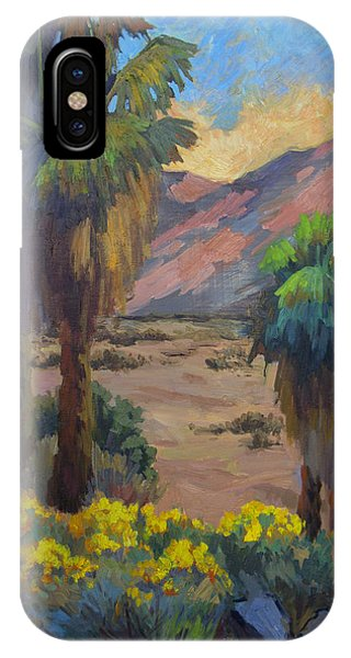 Desert Marigolds At Andreas Canyon IPhone Case