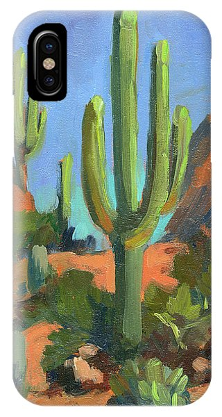 Cactus iPhone Case - Desert Morning Saguaro by Diane McClary