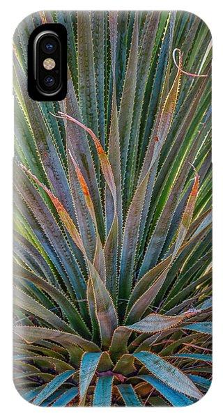 Desert Spoon IPhone Case
