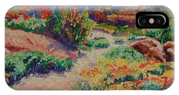 Desert Spring Flowers Namaqualand IPhone Case