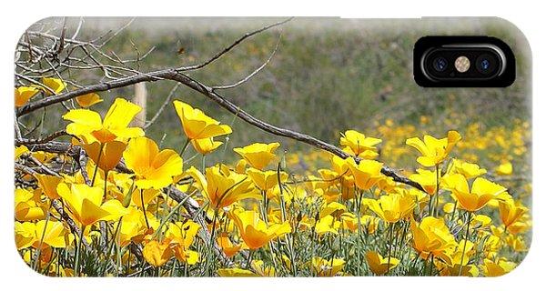 Desert Wild Flowers IPhone Case