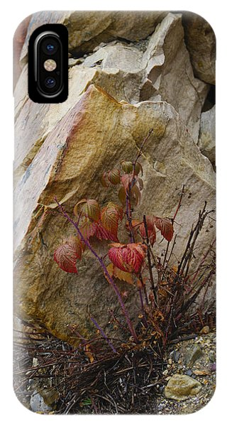 Determined IPhone Case