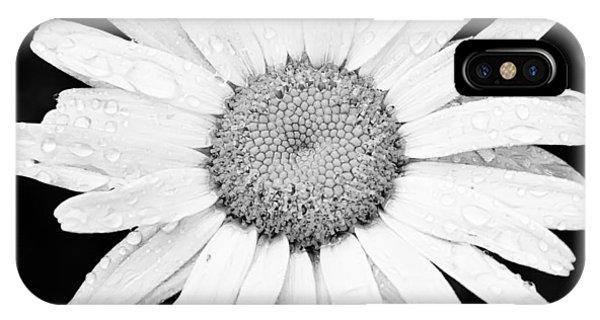 Dew Drop Daisy IPhone Case
