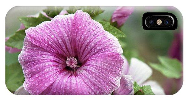Dew Drop Petals IPhone Case