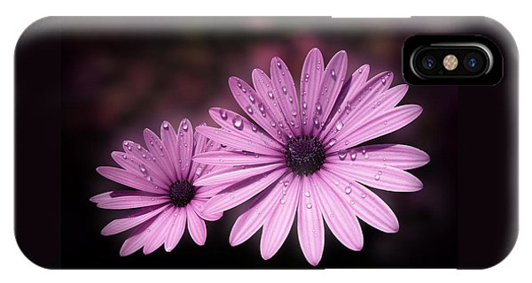 Dew Drops On Daisies IPhone Case