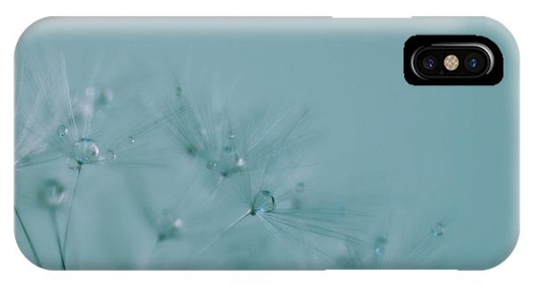 Dew Drops On Dandelion Seeds IPhone Case