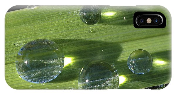 Dew Drops On Leaf IPhone Case