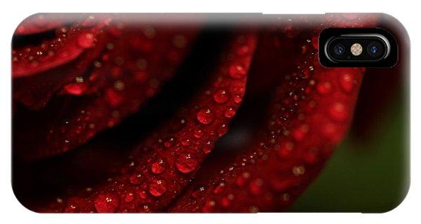 Dew Kissed Rose IPhone Case