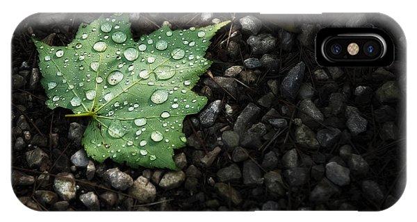 Needles iPhone Case - Dew On Leaf by Scott Norris