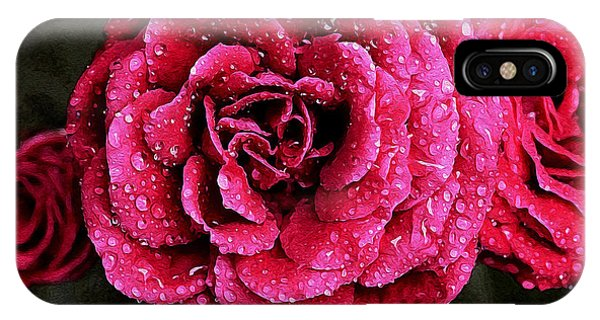 Dew On The Rose IPhone Case