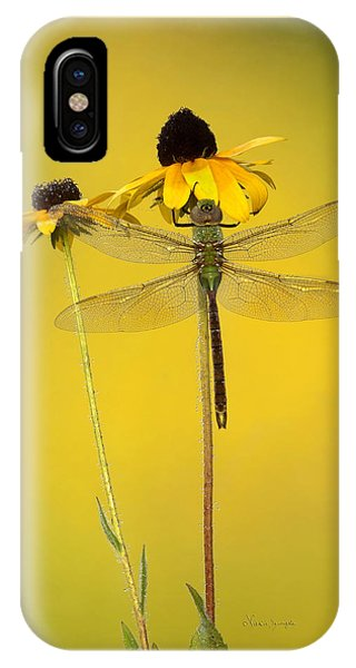 Dewy Darner IPhone Case