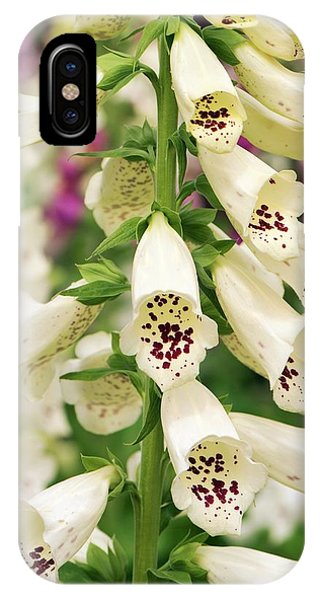 Digitalis Purpurea 'dalmatian Cream' Phone Case by Adrian Thomas