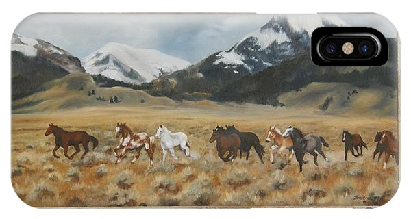 Discovery Horses Framed IPhone Case
