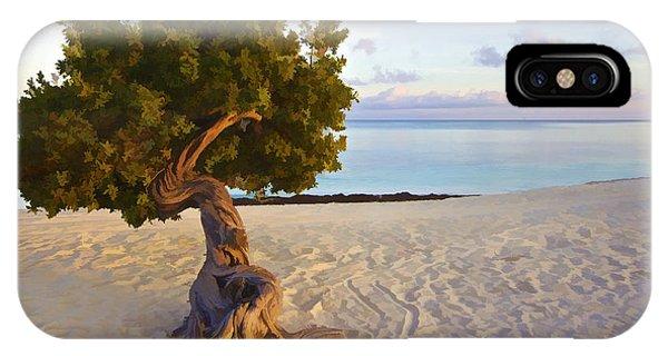Divi Divi Tree Of Aruba IPhone Case
