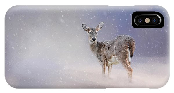 White Tailed Deer iPhone Case - Doe In The Snow by Jai Johnson