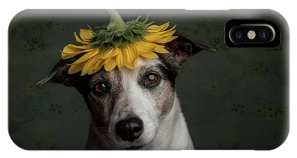 Prairie Dog iPhone Case - Does She Realize She Looks Like A Sunflower.... by Heike Willers