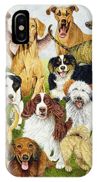 Different iPhone Case - Dog Days by Pat Scott