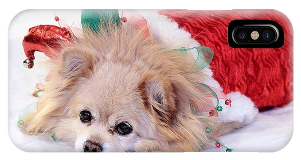 Dog In Christmas Costume IPhone Case